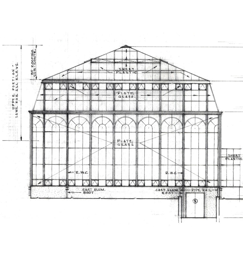 Palm House elevation drawing
