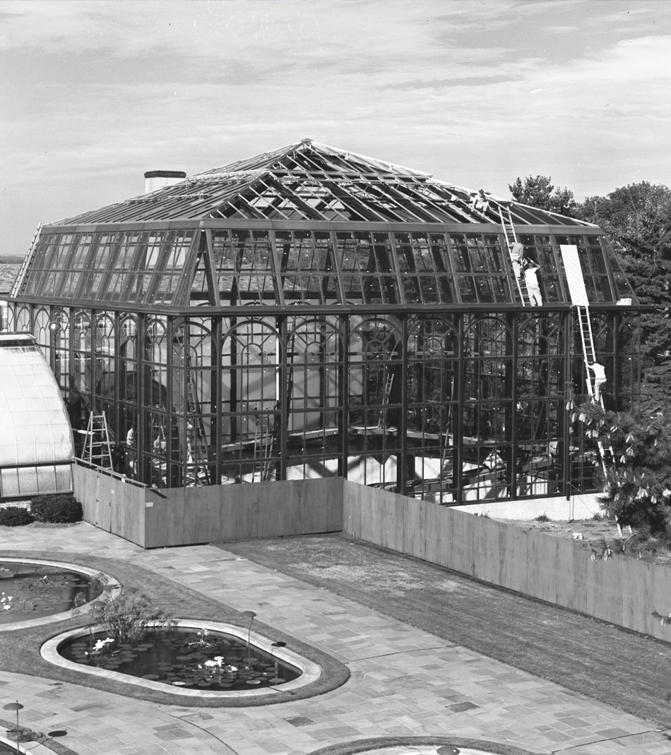 vintage photo of Palm House under construction